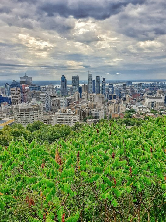 Montreal... our home